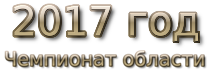 2017 god. Чемпионат области