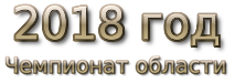2018 god. Чемпионат области