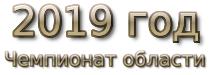 2019 год. Чемпионат области