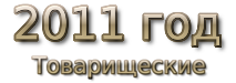 2011 год Товарищеские матчи