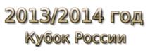 2013-2014 год Кубок России