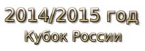 2014-2015 год Кубок России