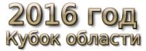 2016 год. Кубок области