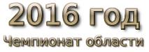 2016 год. Чемпионат области
