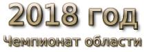 2018 год. Чемпионат области